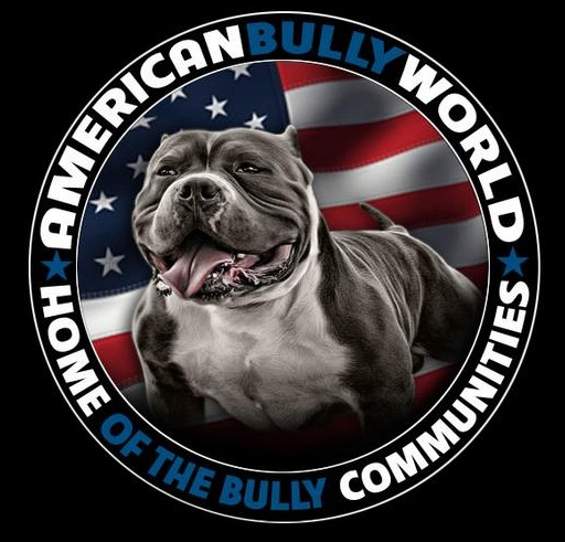 America Bully the World by Regimes Change