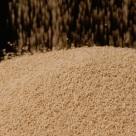 Semi-Dry Yeast